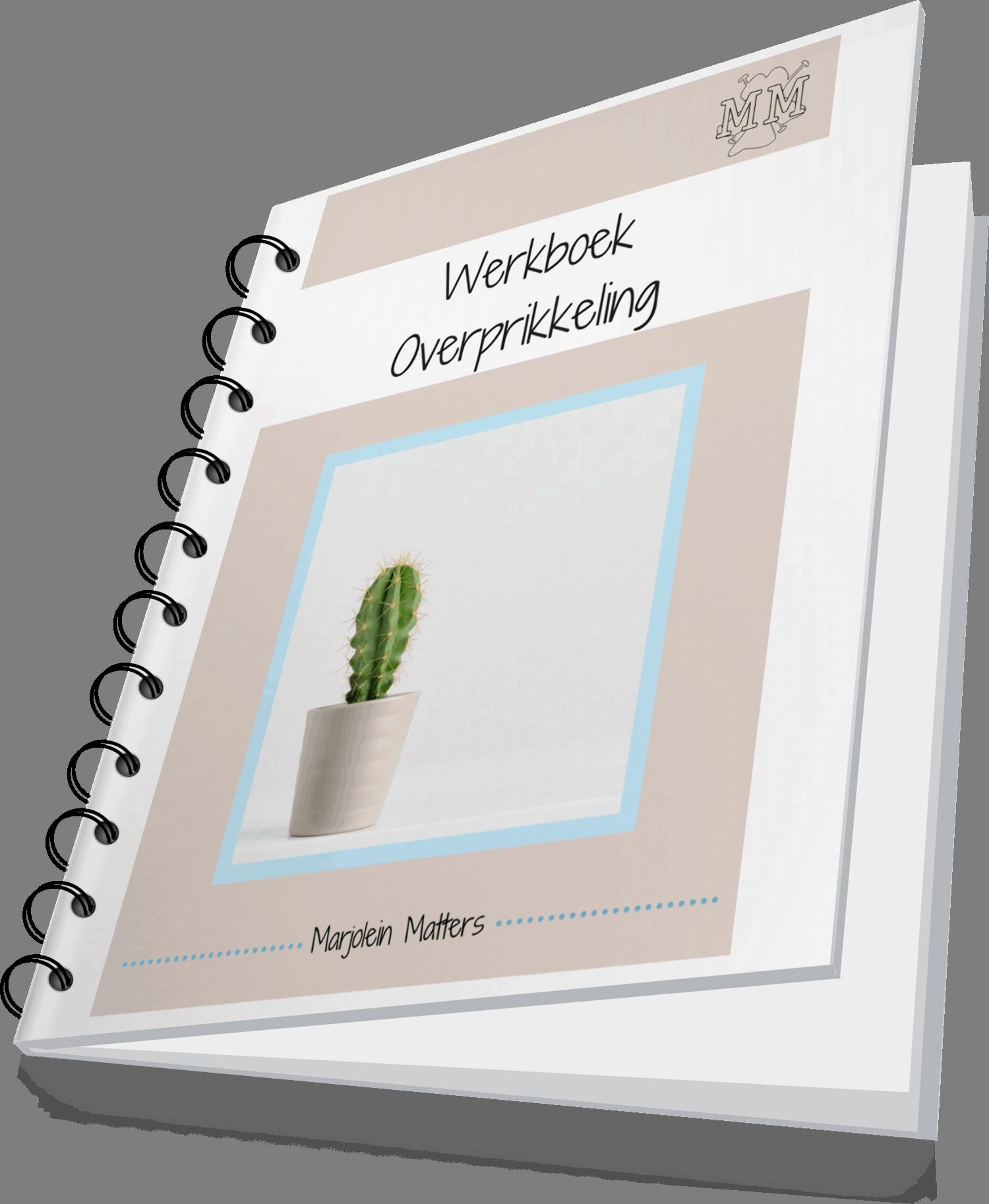 Ebook cover Werkboek Overprikkeling